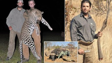 trump brothers trophy hunting migrants