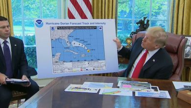 Photo of Trump Releases Sharpie Version of Obama's Birth Certificate Showing Hawaii Is In Kenya